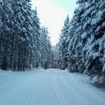 trasy biegowe-warunki