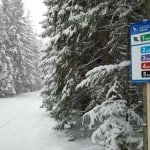 oznakowania tras biegowych